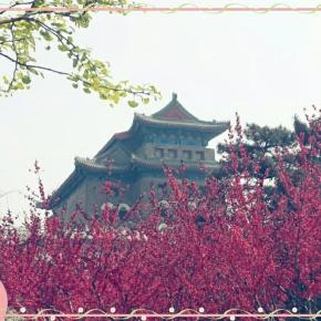 Beijing 2014: A Springtime Story (PartV)