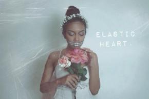 Elastic Heart