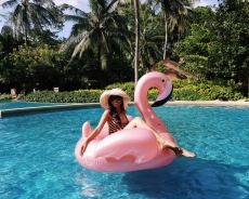 Whatever Floats Your Flamingo, Rayavadee, Krabi.