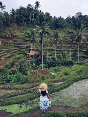 A Guide to Ubud: Eat, Explore, Love