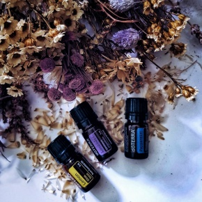 A Guide to Essential Oils for Beginners